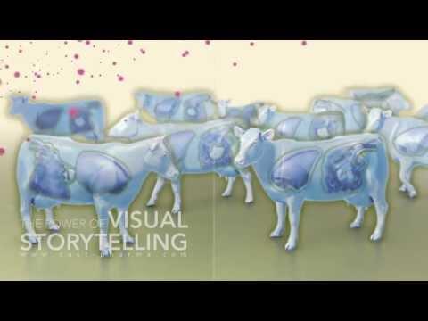 Bovine Viral Diarrhea Mode of Action Animation
