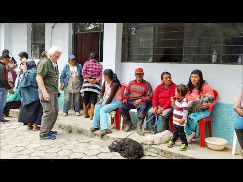 Dogs of Otavalo 2017