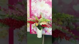 mau hoa đỏ kimlan