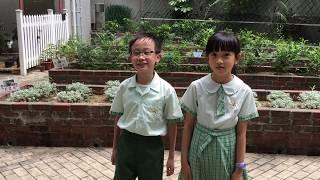 Publication Date: 2018-07-06 | Video Title: 秀天綠田園