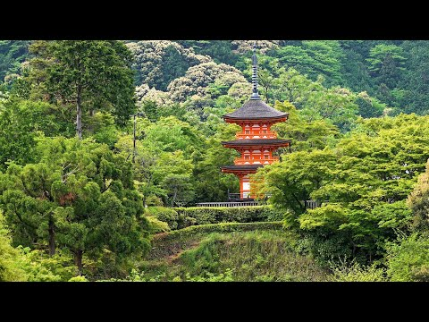 Kyoto Temples, Shrines & Gardens, Japan in 4K Ultra HD
