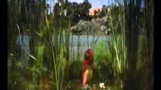 Hazrat Moosa full movie in urdu part 1 by Rana Bilal Usman Khan   YouTube