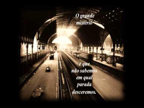 A viagem Ana P Alves