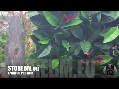 Bm Artificial Hedge Plants