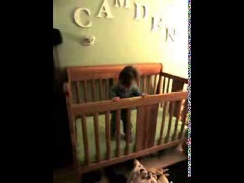 Camden's Daily Wake Up