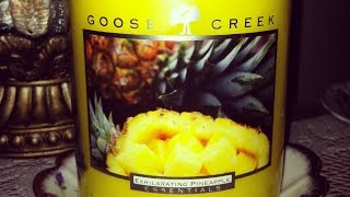 goose creek candle exhilarating pineapple review