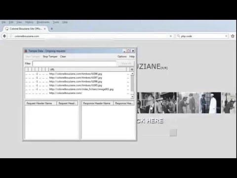 WP-Exploit Framework - Admin shell upload + Metasploit - Meta