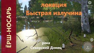 Русская рыбалка 4 - река Северский Донец - Ёрш-носарь на повороте реки