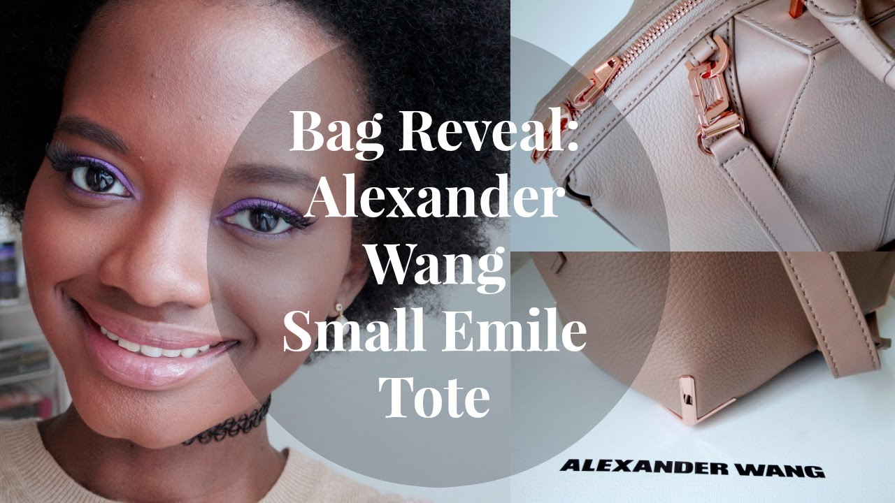 db663401aad7 Bag Reveal! Alexander Wang Small Emile - YouTube
