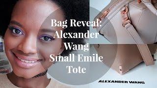 Bag Reveal! Alexander Wang Small Emile