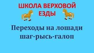 Переходы на лошади шаг рысь галоп
