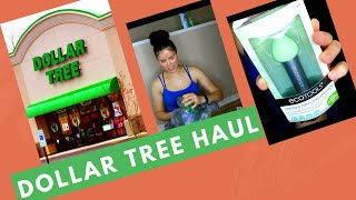 DOLLAR TREE HAUL PRODUCTS 2020!! NEW FINDINGS!!