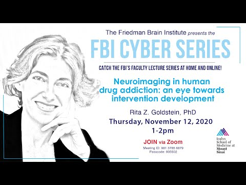 FBI Cyber Series - by Rita Goldstein, PhD
