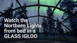 Watch the Northern Lights from a glass Igloo