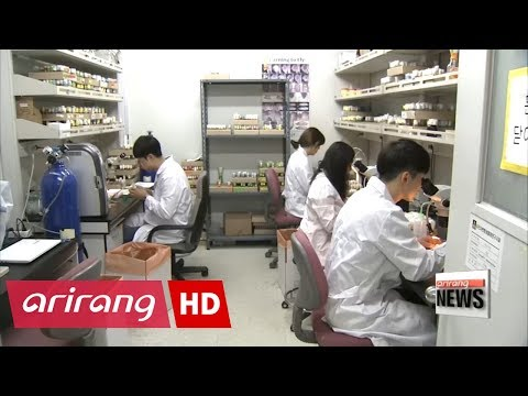 Korean researchers find genetic contributor to obesity and diabetes