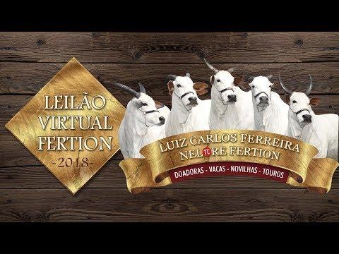 Lote 13 (Festiva TE Pontal VR - VRC 5319)