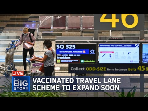 Vaccinated Travel Lane scheme to expand beyond Germany, Brunei soon | THE BIG STORY
