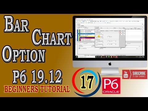 how-to-format-bar-chart-option- -primavera-p6- -19.12- -beginners-tutorial