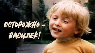 Осторожно Василек 1985 Фильм для семейного просмотра
