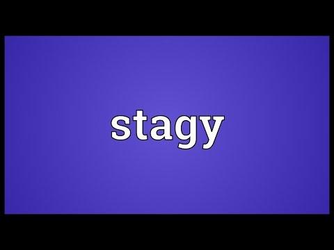 Header of stagy