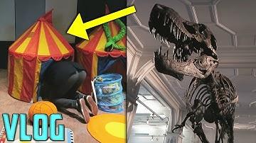Maa Ilman Pienin Hotellihuone? Tyrannosaurus Rex Luuranko!
