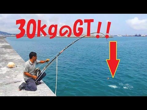 石垣島で30kgのGTとファイト!Fight with 30 kg of GT! 重磯 (English sub)