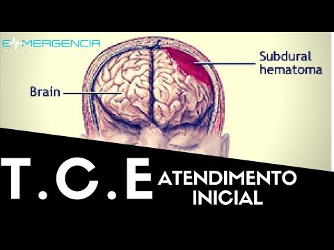 ATENDIMENTO INICIAL AO T.C.E - #012