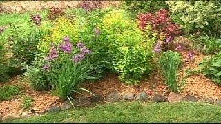 Champlin gardener has eye for design