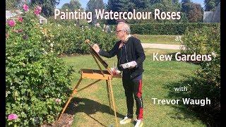 Painting Watercolour Roses at Kew Gardens