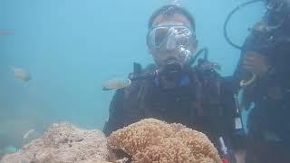 Kd Scuba diving