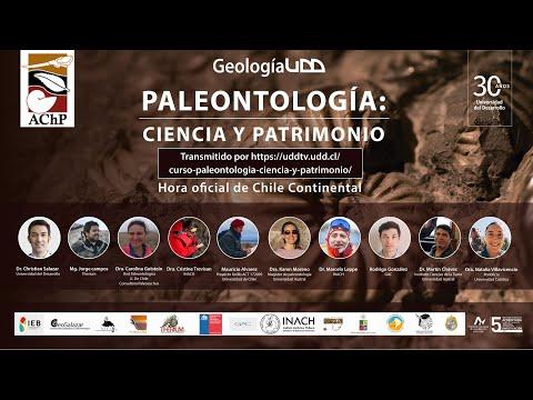 Patrimonio Paleontológico: Fósiles, Territorio y Comunidad- Mg. Jorge Campos
