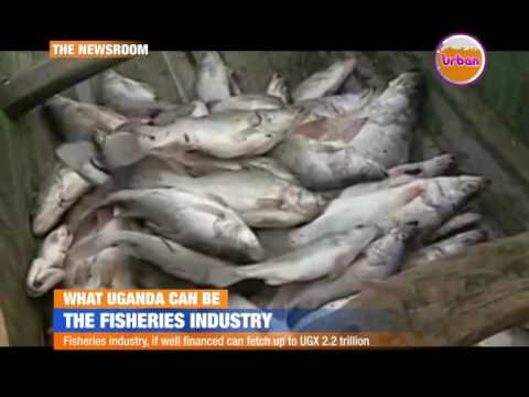 What Uganda can be: The fisheries industry