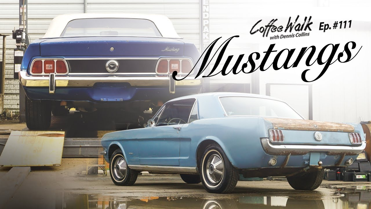 You will love these Mustangs!