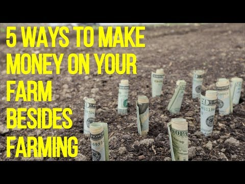 5 WAYS TO MAKE MONEY ON YOUR FARM BESIDES FARMING