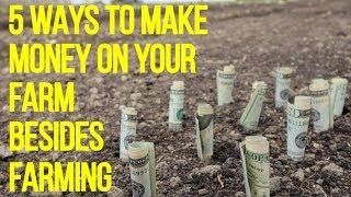 5 WAYS TO MAKE MONEY ON YOUR FARM BESIDES FARMING