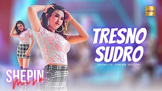 Shepin Misa - Tresno Sudro (Official Live Music)
