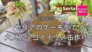 【Vlog153】【多肉植物】【ダイソー多肉】セリアのケーキ型で大人カッコイイリメ缶作り【DIY】【リメイク】