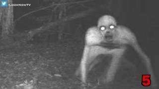 10 Creepy & Unexplained Trail Camera Photos!