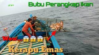 Wow...!Tarik bubu perangkap ikan dapat kerapu emas  || Pull the fish trap traps into gold groupers