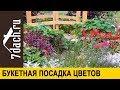 💐 Букетный способ посева цветов на рассаду. Будет очень красиво! - 7 дач
