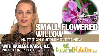 Professional Supplement Review - Small Flowered Willow