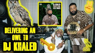 DELIVERING AN OWL TO DJ KHALED FOR HIS NEW ALBUM COVER || THEREALTARZANN
