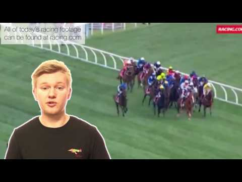 Just The Tip Episode 8 - Melbourne Cup review & Flemington tips