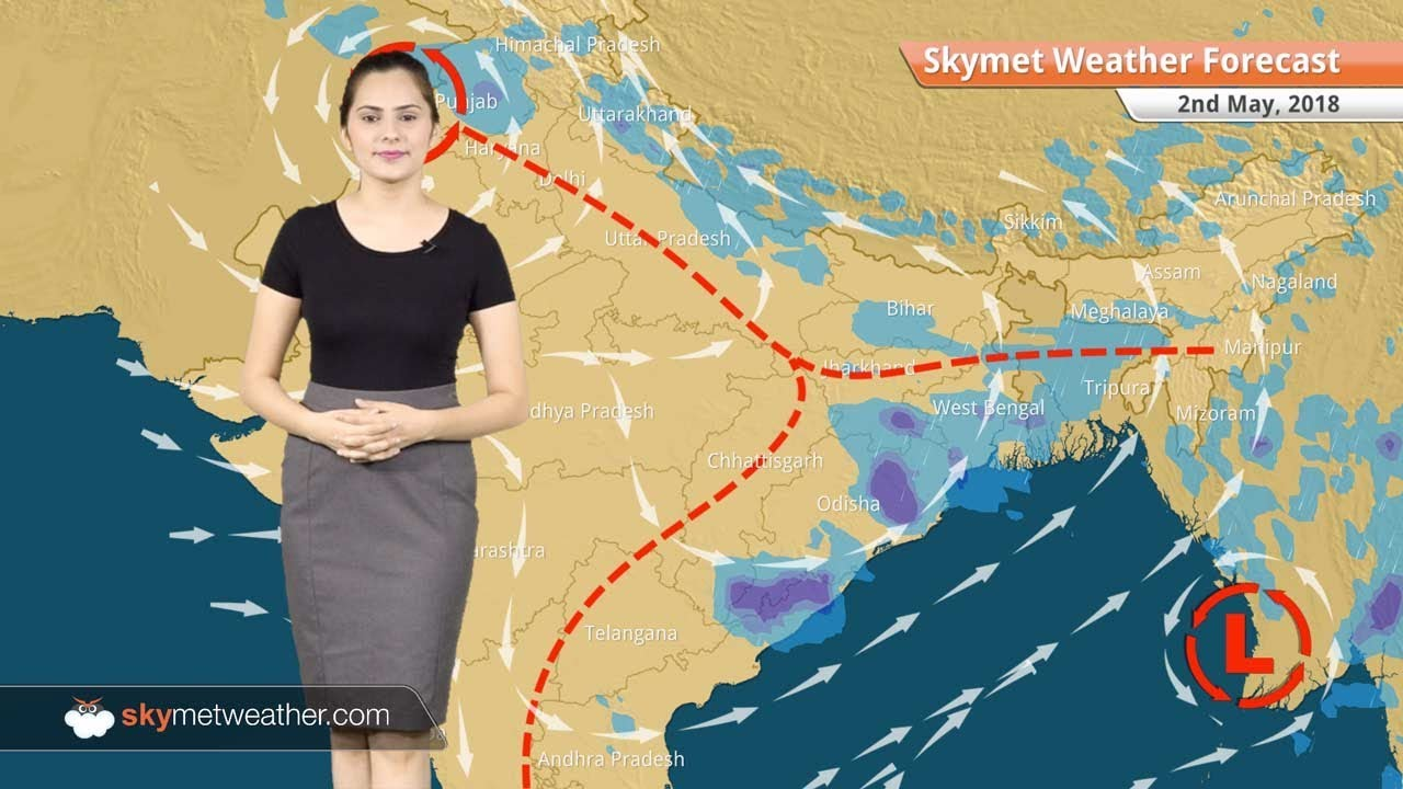 Weather Forecast for May 2: Dust storm, Rains in Punjab, Delhi, Haryana,  North Rajasthan
