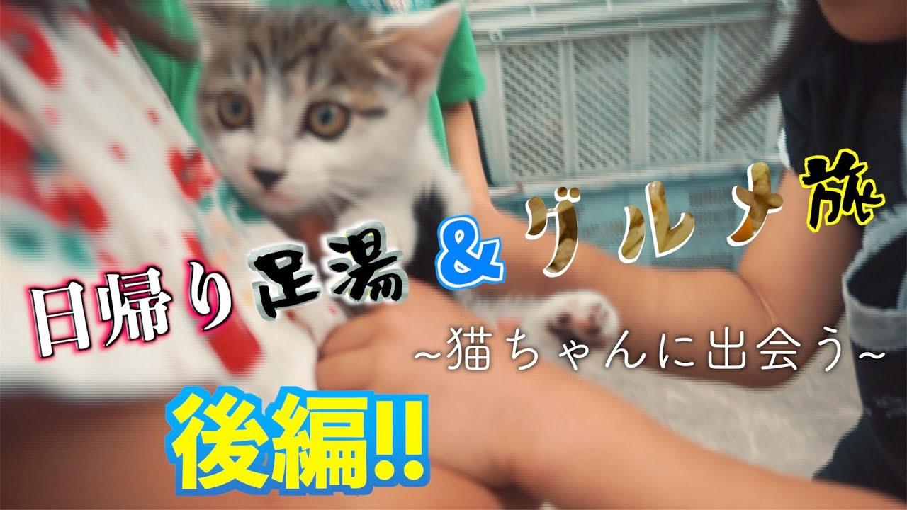 【OFFDAY!!】日帰り足湯&グルメ旅後編!~猫ちゃんに出会う~