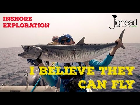 JIGHEAD TV: Inshore fishing exploration in Dubai - testing Favorite X1 SW offshore rods