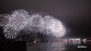 Новогодний грант-салют 2017 Санкт Петербург, от Аэрофлота(Новогодний грант-салют 2017 года, Санкт-Петербург - организатор