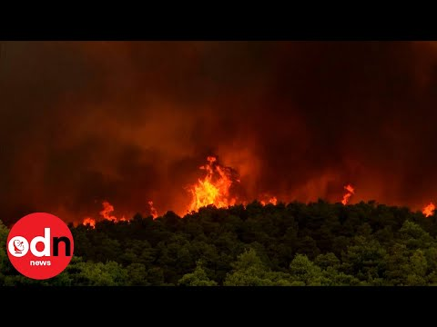 Frightening Footage Shows Huge Wildfire Burning near Athens