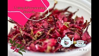 How to use and preserve Red Roselle - Part 1