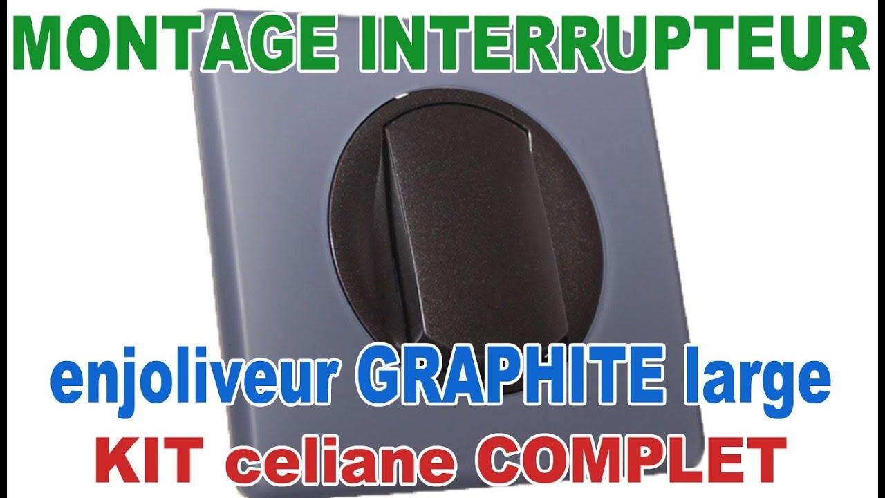 Plaque simple poudré Céliane schiste Legrand 66731
